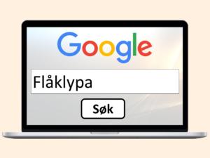 PC-skjerm med Google-søk